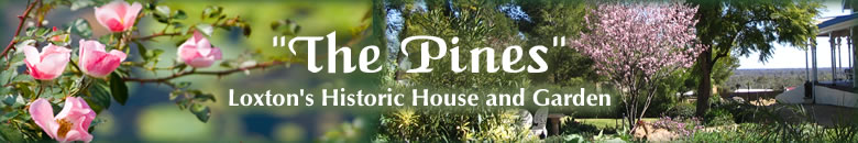 The Pines Loxton